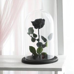 santorini black for ever rose