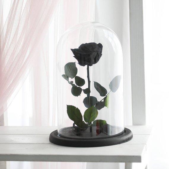 santorini black for ever rose