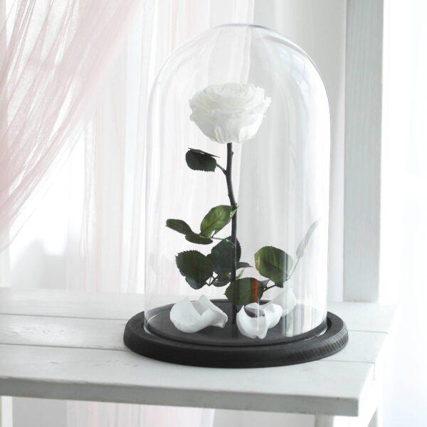santorini-forever-flowers-white