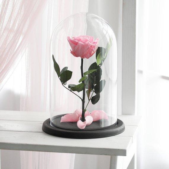 santorini forever roses pink